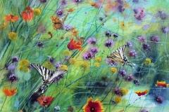 Swallowtails & Fritillaries