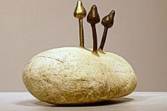 Magic-Mushrooms-3-Pebble-Bronze